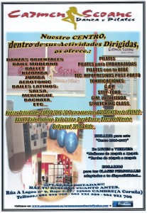 Cartel Local Curso 2017